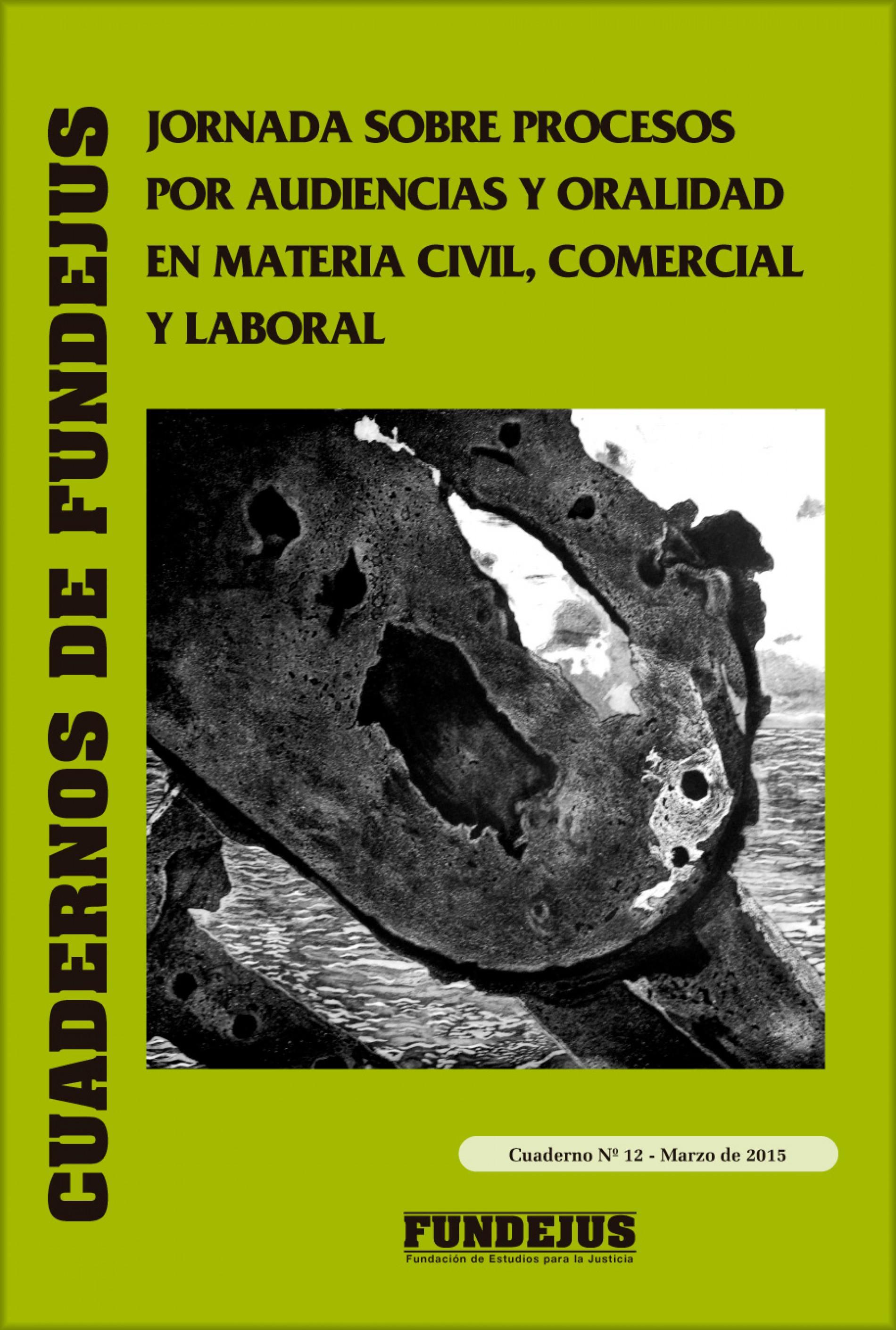 """CUADERNO 12: """"Jornada sobre procesos por audiencias y oralidad en materia civil, comercial y laboral"""""""
