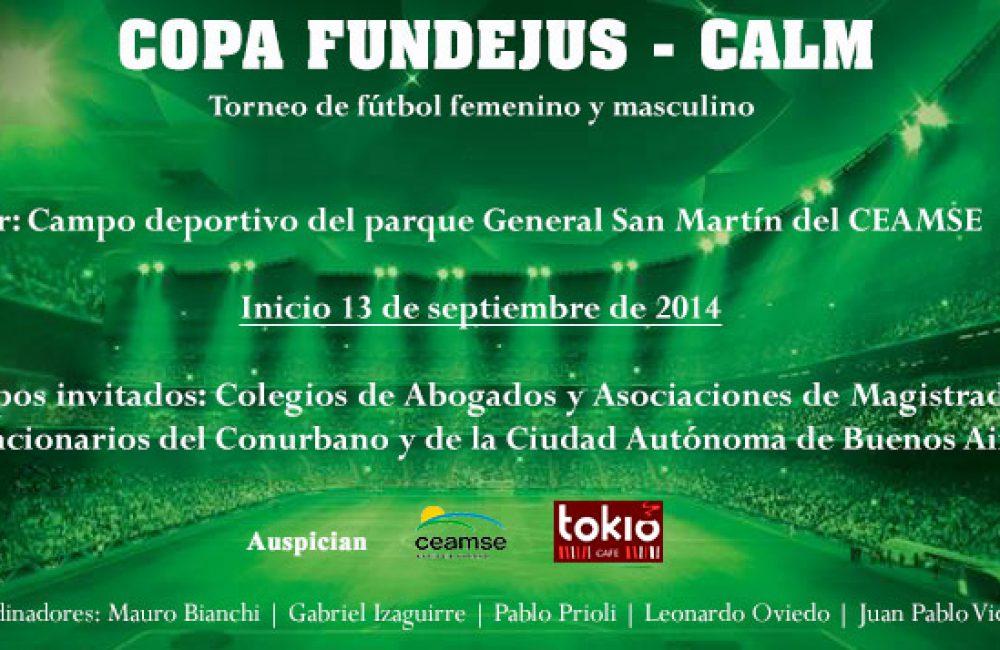 Torneo de Fútbol 2014