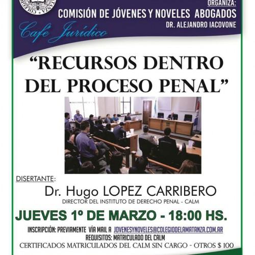 Recursos dentro del Proceso Penal
