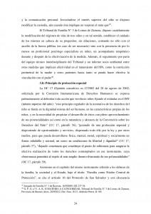 DESPLAZAMIENTO-Y-MORIGERACION-DEL-PRINCIPIO-POSITIVO-EN-LOS-PROCESOS-DE-FAMILIA-024[1]