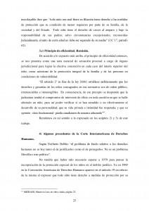 DESPLAZAMIENTO-Y-MORIGERACION-DEL-PRINCIPIO-POSITIVO-EN-LOS-PROCESOS-DE-FAMILIA-025[1]