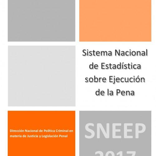 """""""Informe del Sistema Nacional de Estadística sobre Ejecución Penal (2017)"""""""