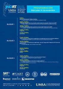 difusion.-UMSA-programa_JNDRT-001
