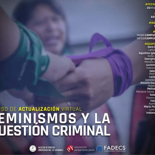 [Curso virtual] Feminismos y la cuestión criminal.